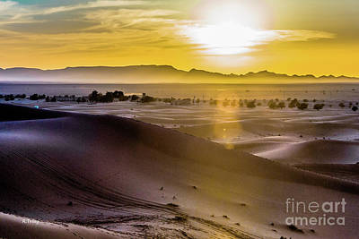 Photograph - Dancing Shadows In The Dunes by Rene Triay Photography