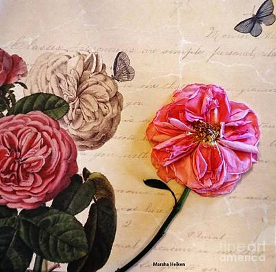 Mixed Media - The Beauty Of A Dried Rose by Marsha Heiken