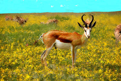 Painting - The Beauty Of An Antelope by Bruce Nutting