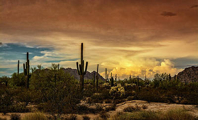 Photograph - The Beauty Of An Evening In The Southwest  by Saija Lehtonen