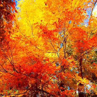 Painting - The  Beauty Of Autumn by MaryLee Parker