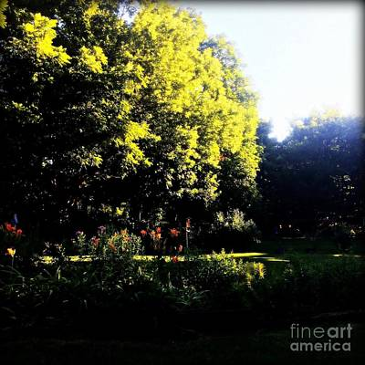 Frank J Casella Royalty-Free and Rights-Managed Images - The Beauty of Nature by Frank J Casella