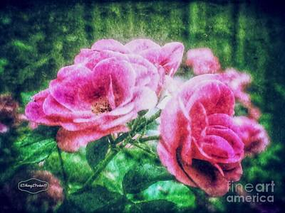 Mixed Media - The  Beauty Of Roses by MaryLee Parker