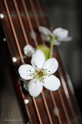 The Beauty Of Strings Print by Linda Sannuti