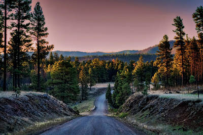Photograph - The Beauty Of The Back Roads  by Saija Lehtonen