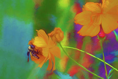 Photograph - The Bee by Nikolyn McDonald