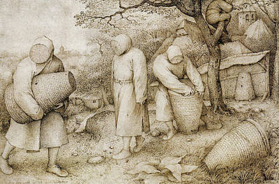 Drawing - The Beekeepers And The Birdnester by Pieter Bruegel the Elder