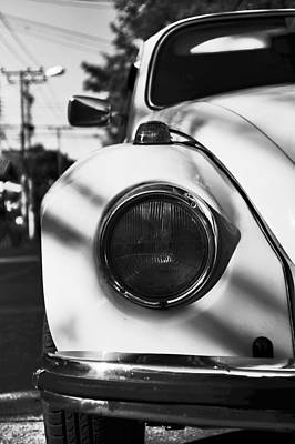 Photograph - The Beetle by Lee Webb