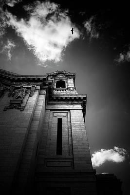 Photograph - The Beholder by Matthew Blum