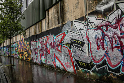 Photograph - The Belfast Peace Wall by Teresa Wilson