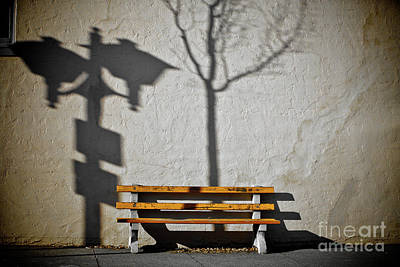 Photograph - The Bench by Derek Selander