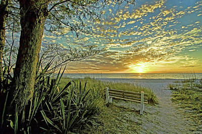 Photograph - The Bench by HH Photography of Florida