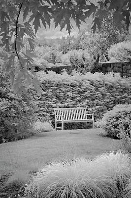 Photograph - The Bench by Jill Love