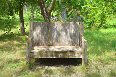 Photograph - The Bench by Ray Shrewsberry