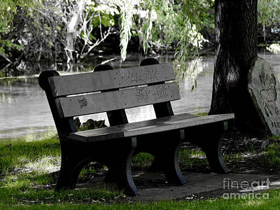 Photograph - The Bench by Tara Lynn