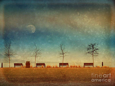Photograph - The Benches By The Moon by Tara Turner