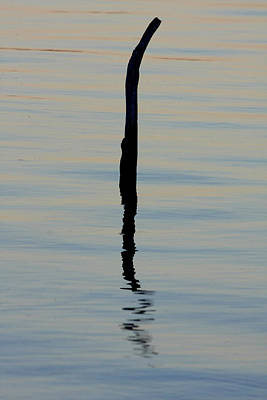 Photograph - The Bent Post by Tony Brown