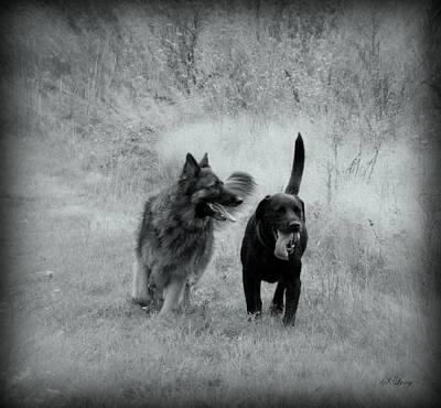 Black Lab Digital Art - The Best Friends Are Old Friends by Sue Long