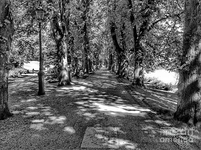 Photograph - The Bicycle Path In Greyscale by Joan-Violet Stretch