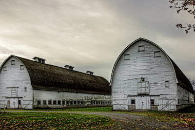 Photograph - The Big Barns by Barry Jones