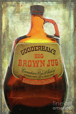 Photograph - The Big Brown Jug by Nina Silver