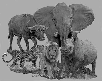 Digital Art - The Big Five by Larry Linton