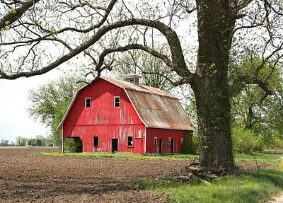 Photograph - The Big Red Barn by David Dunham