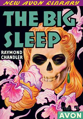 The Big Sleep Art Print