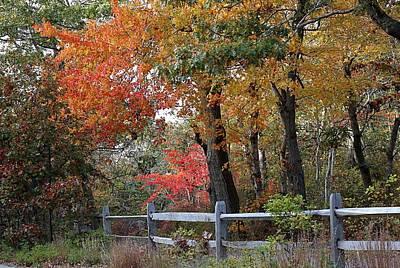 Split Rail Fence Photograph - The Bike Path by Linda Crockett
