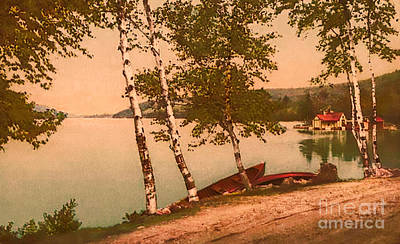 Photograph - The Birches At Oak Birch Inn, Alton Bay, Lake Winnipesaukee, N. H.  by Mim White