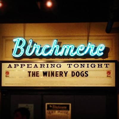 Band Photograph - Winery Dogs At The Birchmere by Nick Beatty