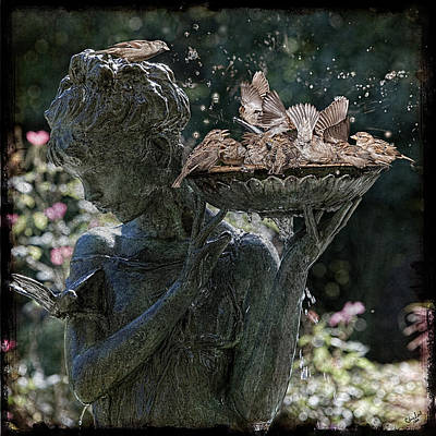 The Bird Bath Art Print