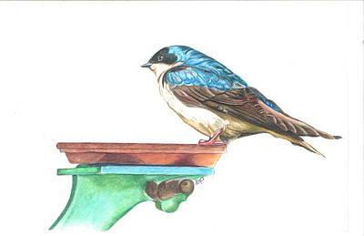 The Bird Feeder Art Print by Dina Pecci
