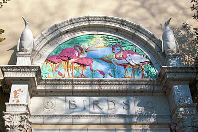 Photograph - The Bird House by Steve Stuller