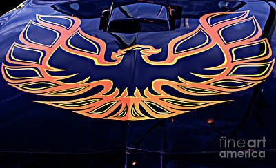 Photograph - The Bird - Pontiac Trans Am by Jane Eleanor Nicholas