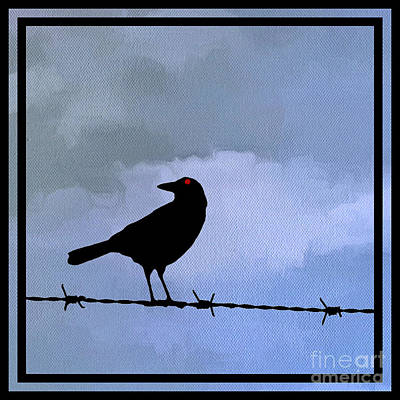 Barbed Wire Fences Photograph - The Black Crow Knows Blue by Edward Fielding