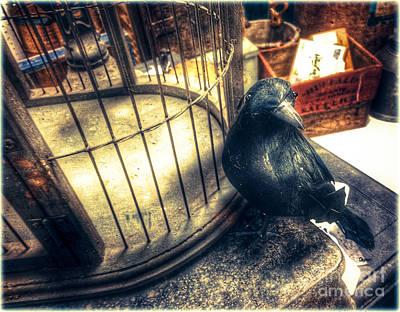 Eerie Digital Art - The Blackbird Attic  by Steven Digman