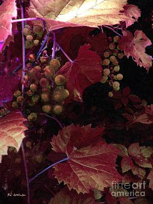 The Blood Of The Grape Art Print by RC deWinter