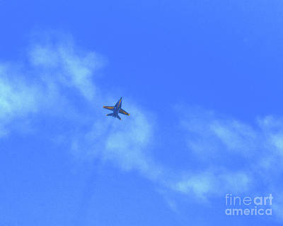 Photograph - The Blue Angel by Scott Cameron