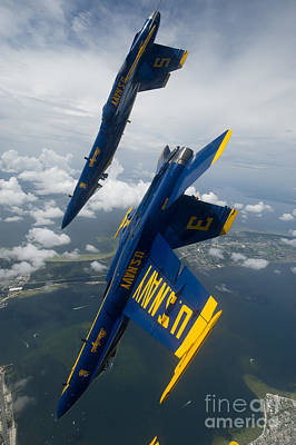 Red Roses - The Blue Angels over Pensacola Beach by Celestial Images