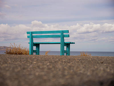 Photograph - The Blue Bench by Rae Tucker