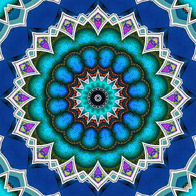 Digital Art - The Blue Collective 10 by Wendy J St Christopher