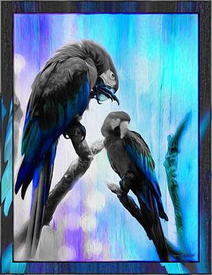 Nature Photograph - The Blue Macaws  by Daniel Arrhakis