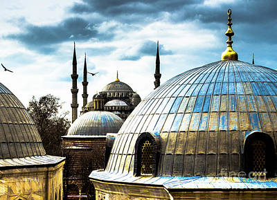 Photograph - The Blue Mosque by Rene Triay Photography