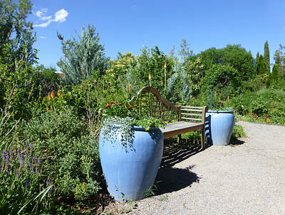 Photograph - The Blue Pots by Claudia Goodell