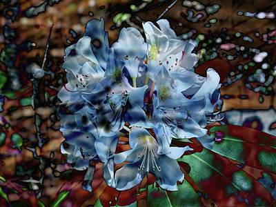 Photograph - The Blue Rhododendron by Thom Zehrfeld