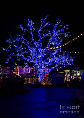 Photograph - The Blue Tree by Jennifer White