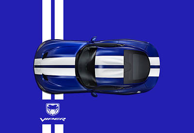 Viper Wall Art - Photograph - The Blue Viper by Mark Rogan