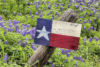 Photograph - The Bluebonnet Trail In Ennis With A Texas Flag by JC Findley