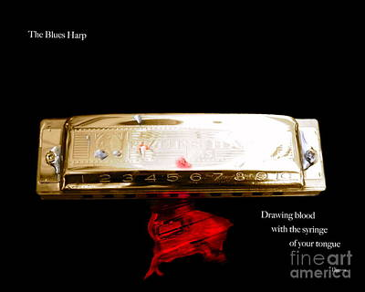 The Blues Harp Print by Steven  Digman